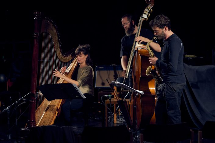 KATHRIN PECHLOF TRIO: Kathrin Pechlof (harp), Robert Landfermann (b), Christian Weidner (sax)
